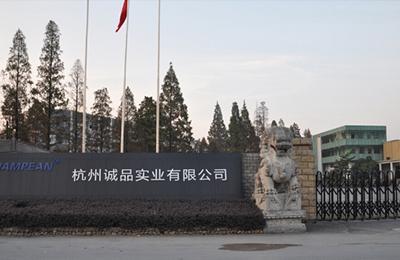 杭州诚品实业有限公司网站制作案例